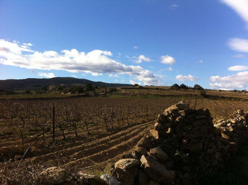 Roussillon2